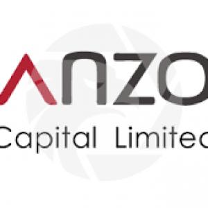 Anzo Capital Ltd Review