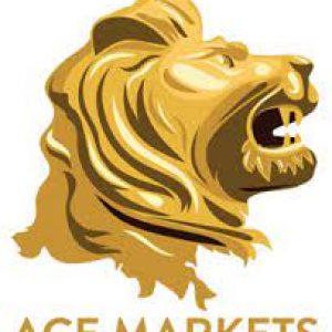ACE Markets LLc Broker Review
